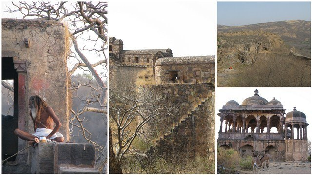 Images of Hammira's fortress of Ranthambore, south eastern Rajasthan.